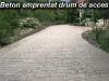beton-amprentat-drum-de-acces 2